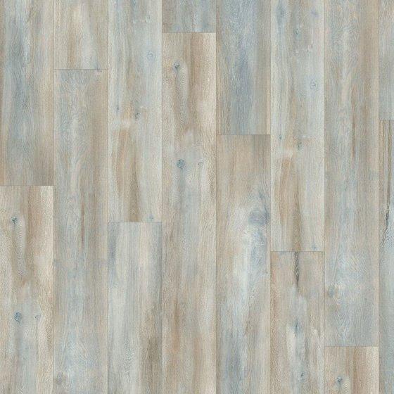 Дуб Абергела тёмный - главное фото