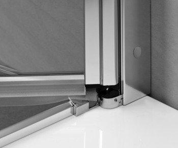 Душевая дверь EOS DWJ 100 без матовой вставки-15404