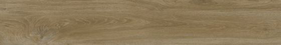 Ajanta Hazel - главное фото