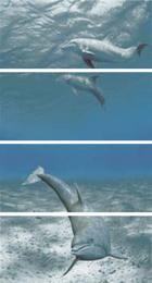 Decorado Goa Delfin - 4 декор (из 4х * 27*60) , 108*60