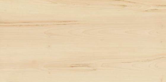 Элемент Ачеро - главное фото