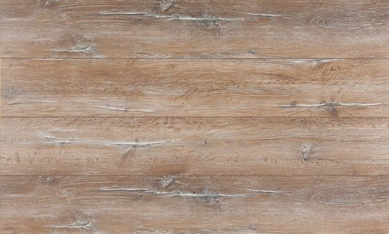 Дуб Бриони - главное фото