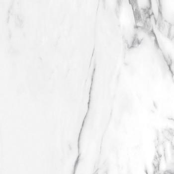 Ellora Zircon-20171