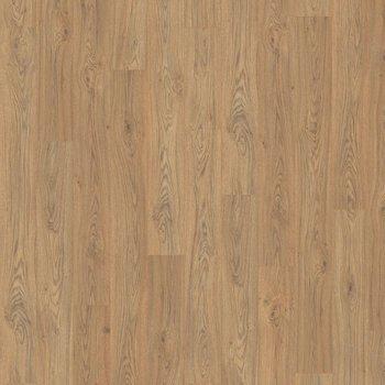 Дуб Ставелл натуральный-11961