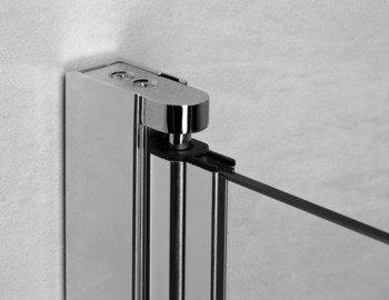 Душевая дверь EOS DWJ 100 без матовой вставки-15401