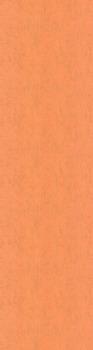 Обои Джангл фон оранжевый-20100