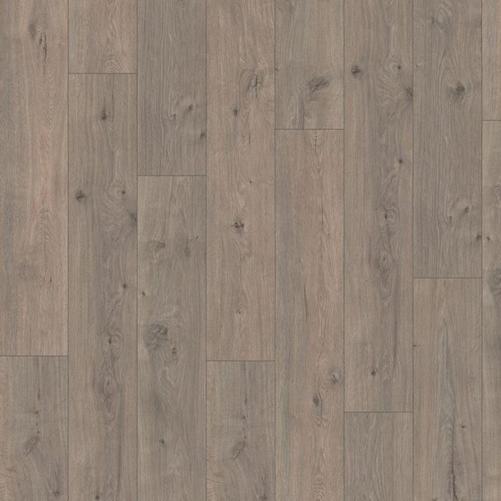 Дуб Муром серый - главное фото