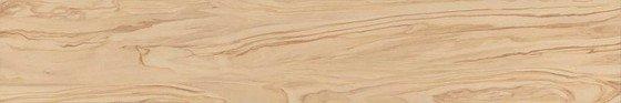 Олива бежевый обрезной - главное фото