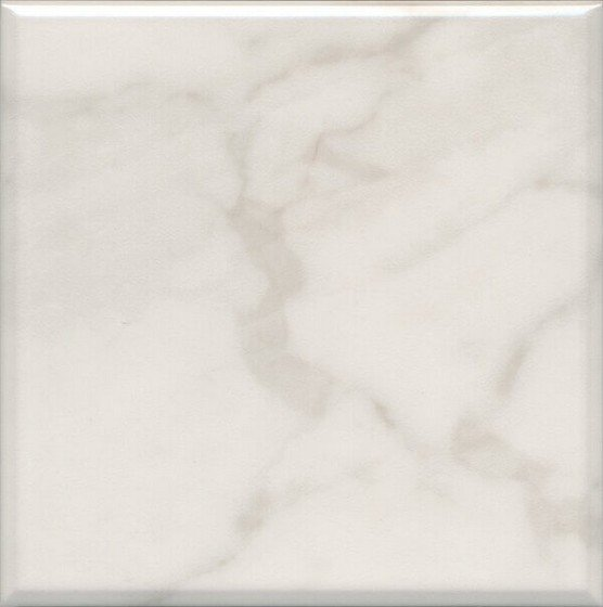 Стемма белый - главное фото