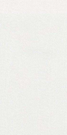 Абингтон обрезной - главное фото