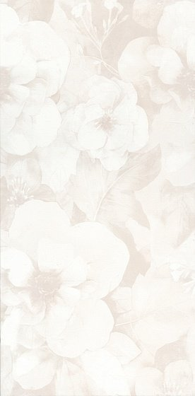 Абингтон цветы обрезной - главное фото