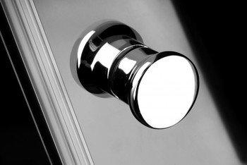 Душевая дверь EOS DWJ 100 без матовой вставки-15403