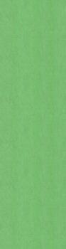 Обои Джангл фон зелёный-20092