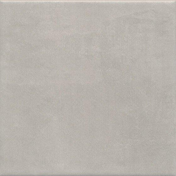 Понти серый - главное фото
