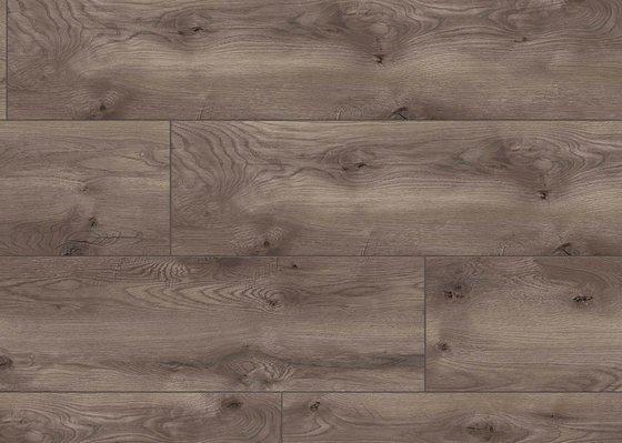 Дуб Граппа - главное фото