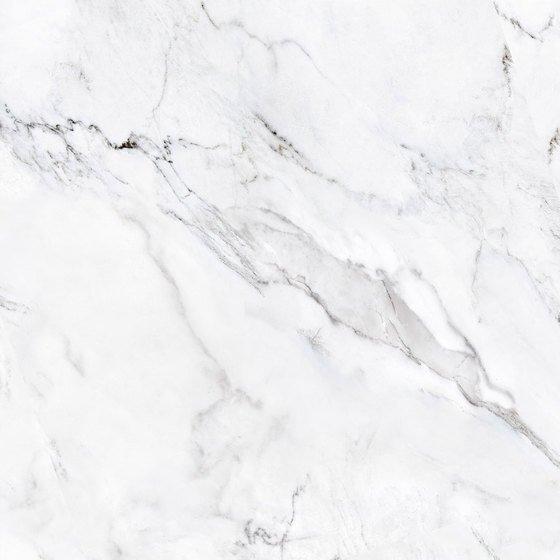 Арина белая - главное фото