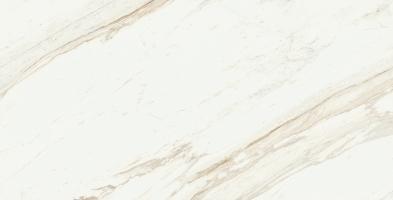 Треви Уайт - главное фото