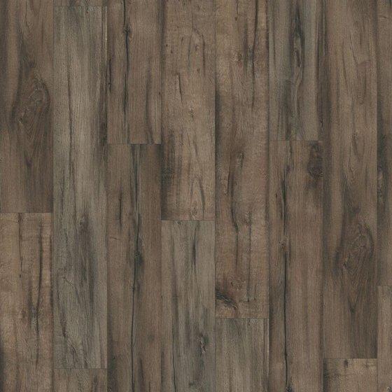 Дуб Брайнфорт серый - главное фото
