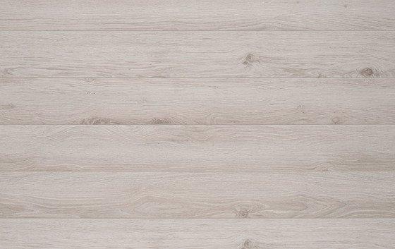 Дуб Арагон - главное фото