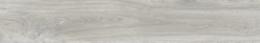 Ajanta Acacia