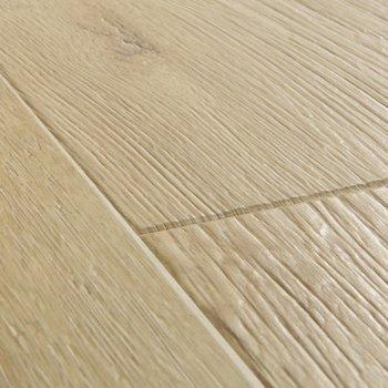 Дуб песочный-10951