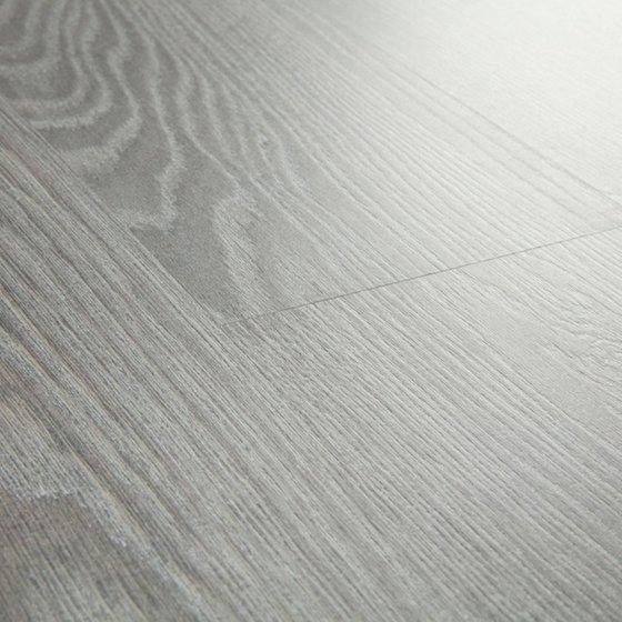 Дуб серый серебристый - главное фото