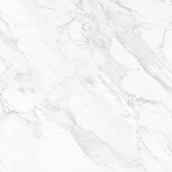 Фрагонар белый обрезной - главное фото