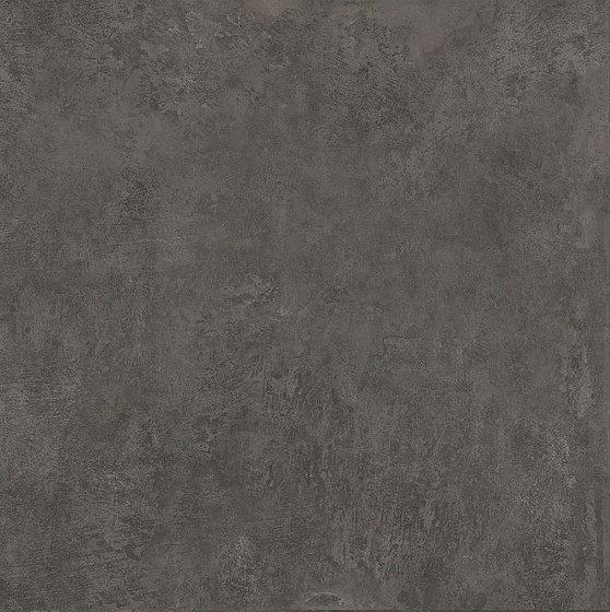 Геркуланум коричневый - главное фото