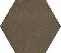 Раваль коричневый