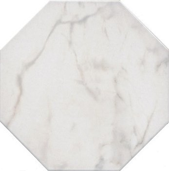 Сансеверо белый-6882