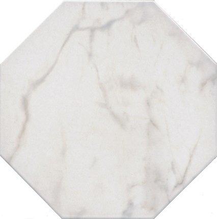 Сансеверо белый - главное фото