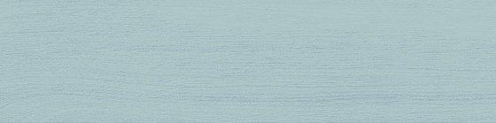 Вяз бирюзовый - главное фото