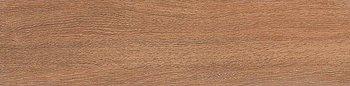 Вяз коричневый-8612