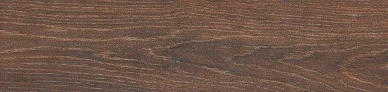 Вяз коричневый темный - главное фото