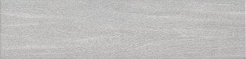 Вяз серый-7175