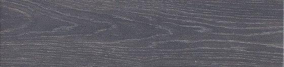 Вяз серый темный - главное фото